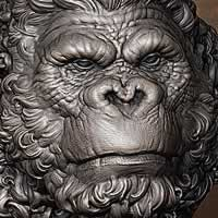 http://www.pixologic01.com/zbrush/gallery/files/0803Fabricio Torres/ape_13.jpg